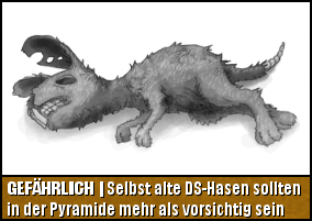 Gefährlich   Selbst alte DS-Hasen sollten in der Pyramide mehr als vorsichtig sein
